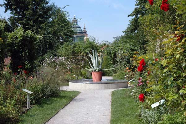 austria_melk_garden.jpg