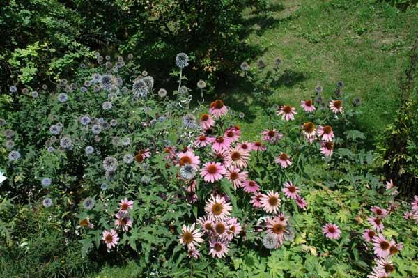 austria_melk_garden2.jpg