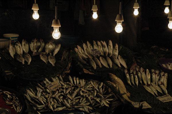 istanbul_fish_market.jpg
